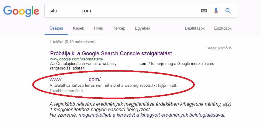 Robots.txt fájl hibás beállítása